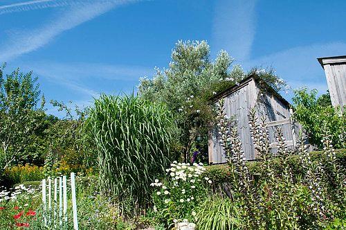 jardins familiaux à Kervé - 2017
