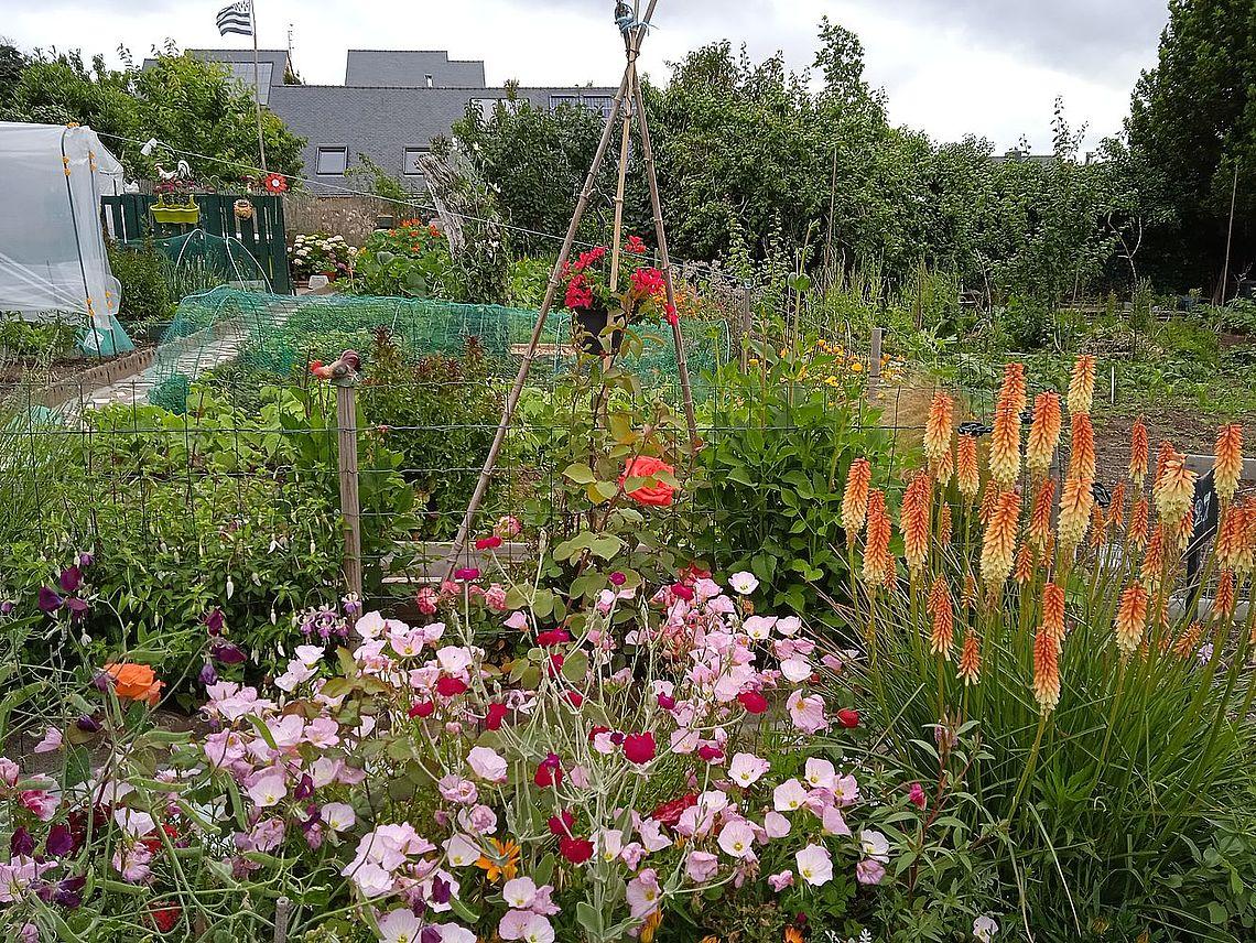 Jardin de Mireille Pelletier
