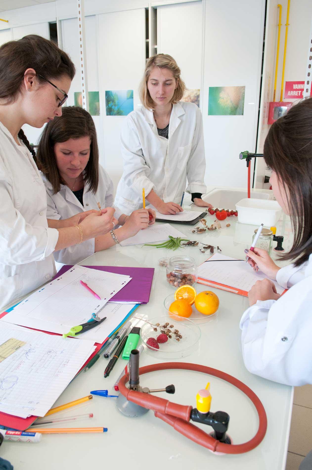 Etudiants à la fac des sciences