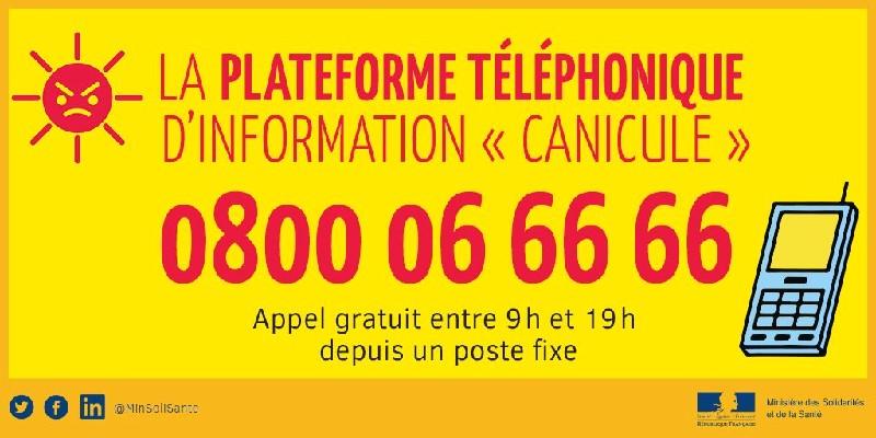 Canicule info