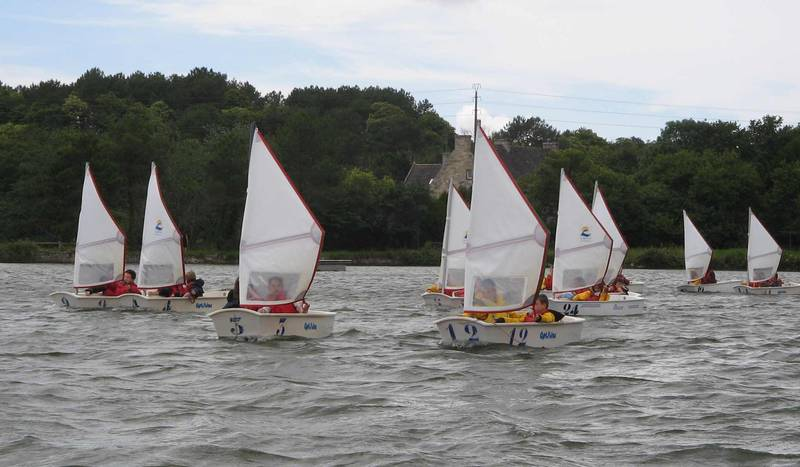 Voiles papillons