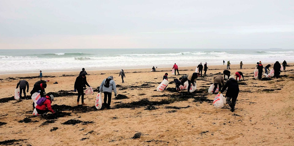 Nettoyages mensuels des plages du Morbihan
