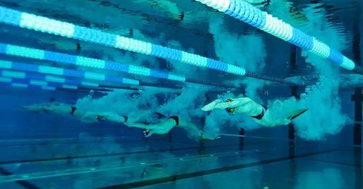 Nage avec palmes