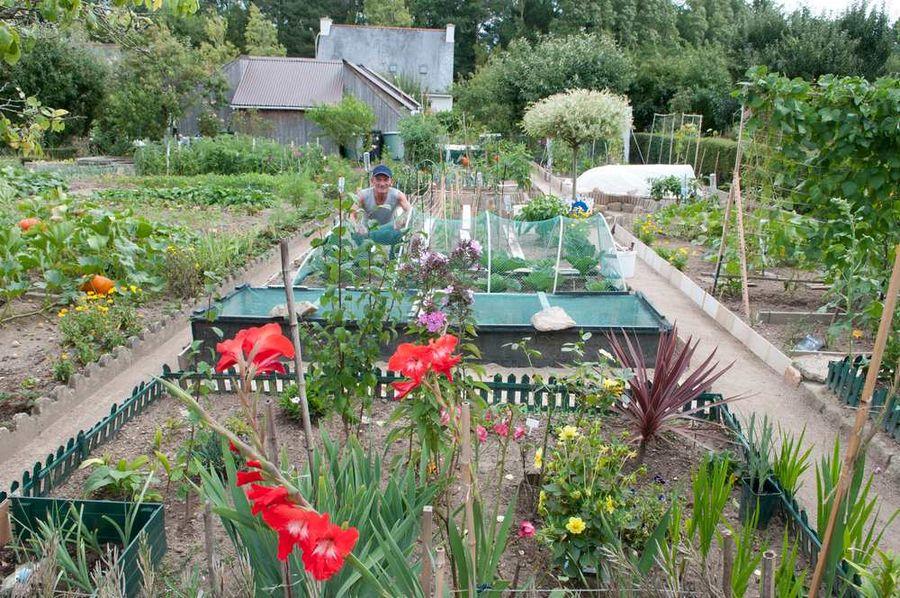 Jardins familiaux à Bois-du-Château