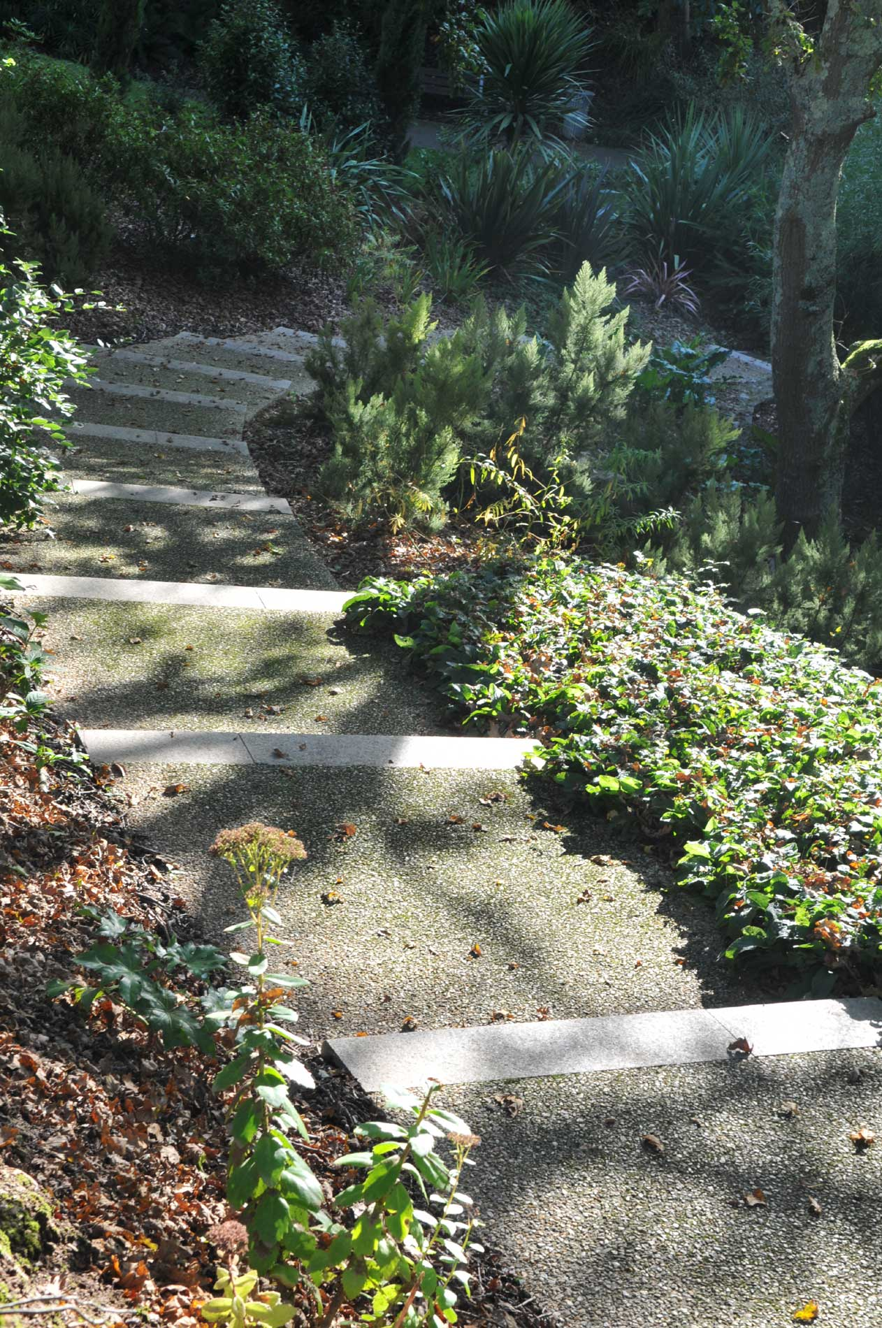 Escalier au parc du Venzu