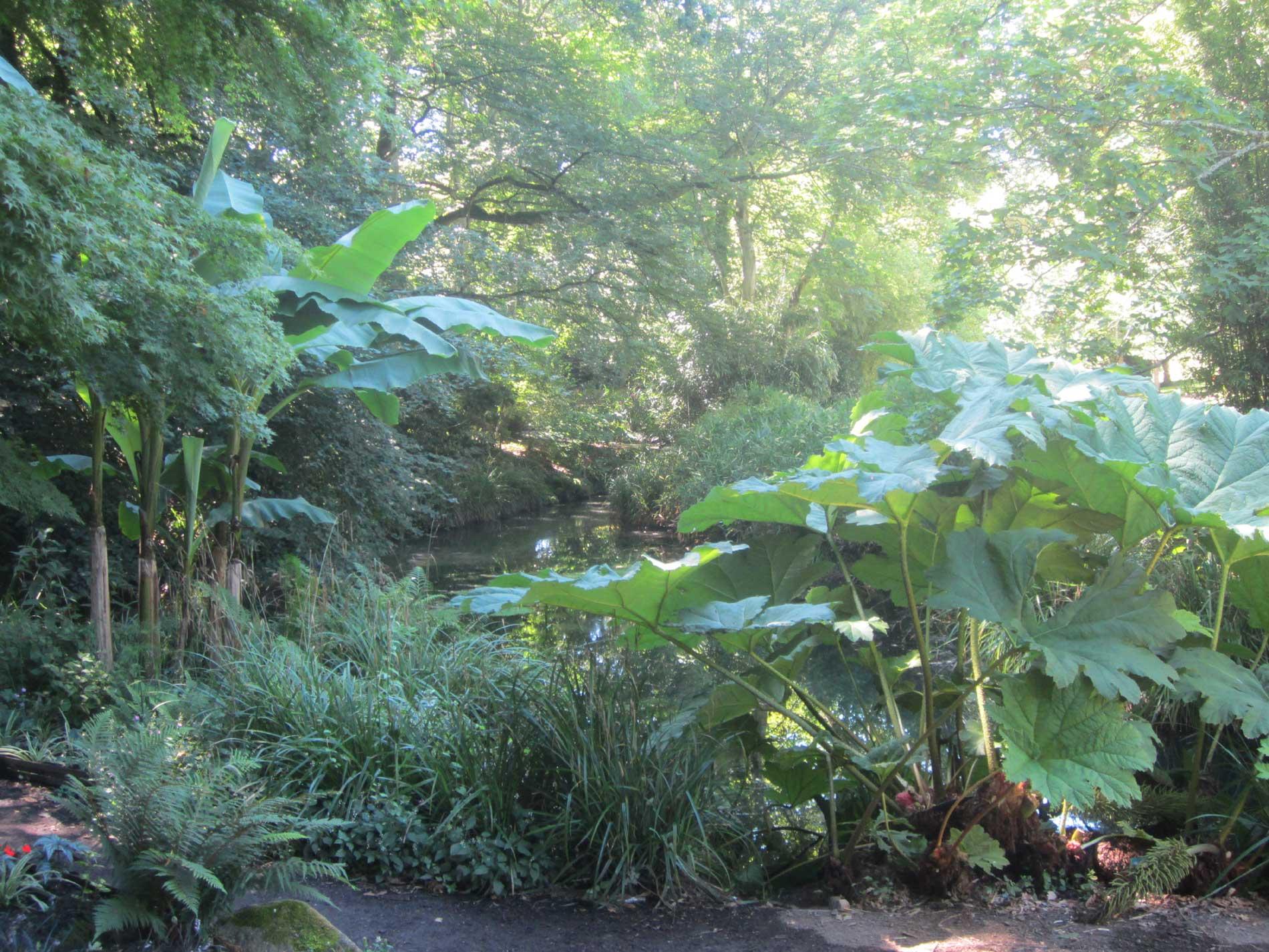 Ambiance tropicale au jardin Chevassu