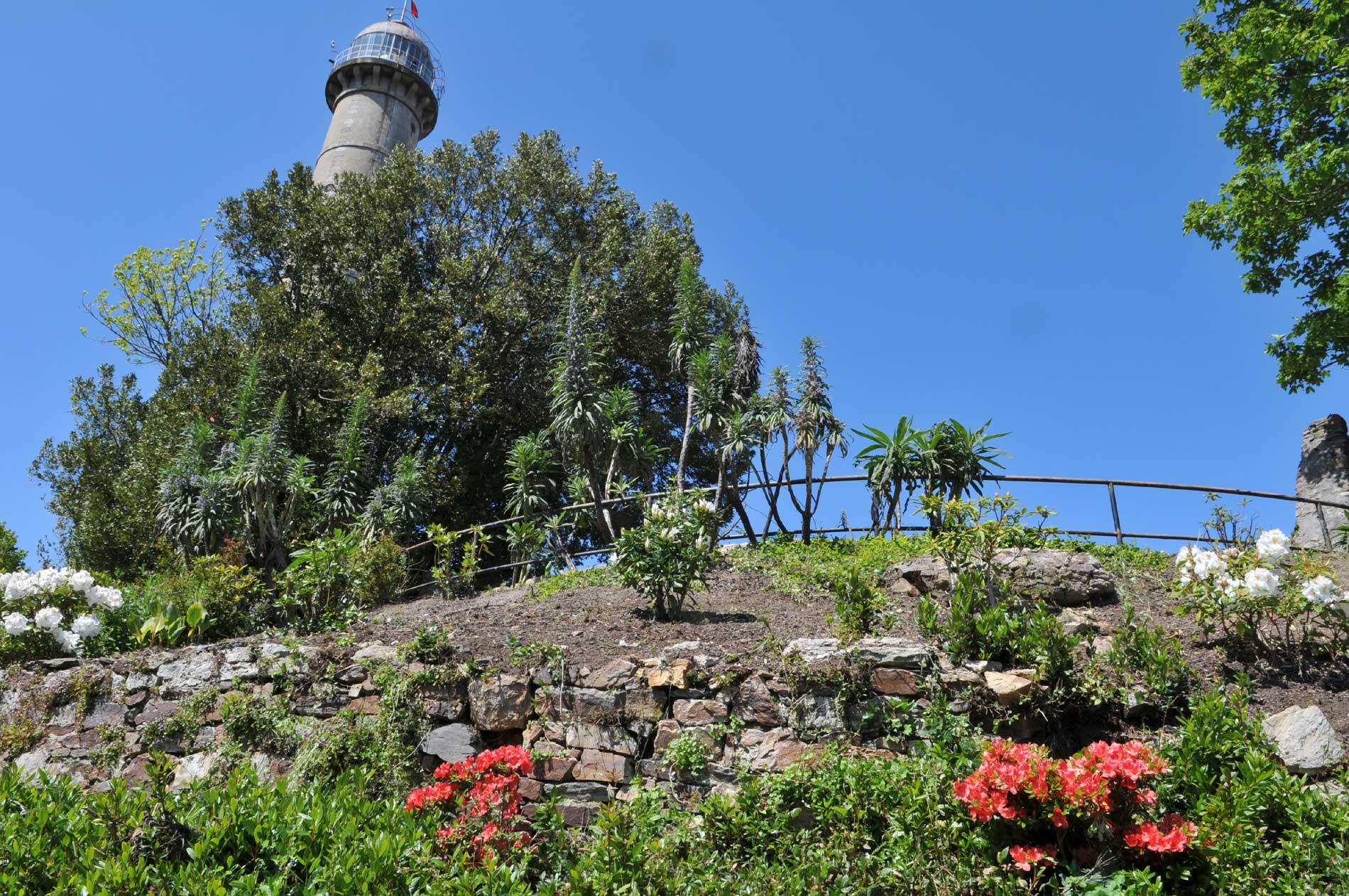 La colline du Faouëdic
