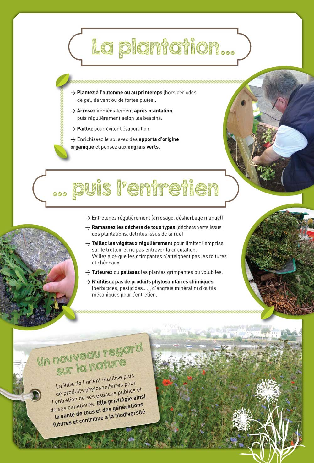 Conseils : planter... et entretenir !