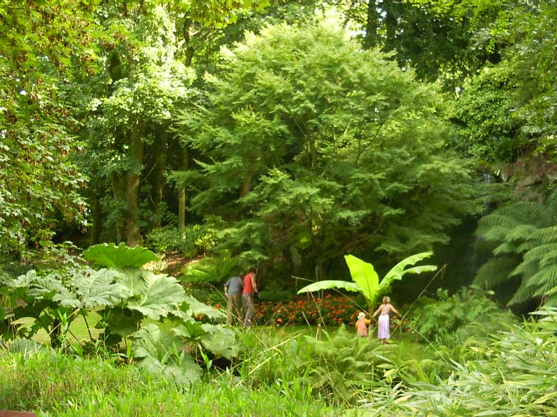 Cascade au jardin Chevassu - circuit 5