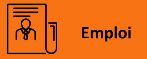 Emploi - icone Noun project