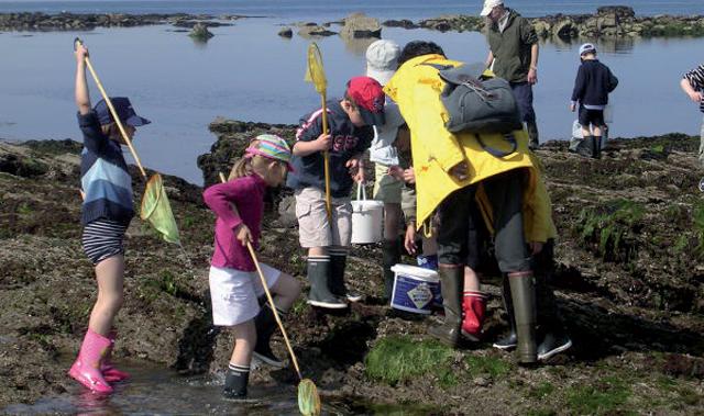 pêche à pied - centre aéré FLK